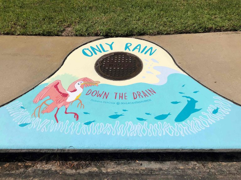 Only Rain Down the Drain: A County Stormdrain Awareness Project