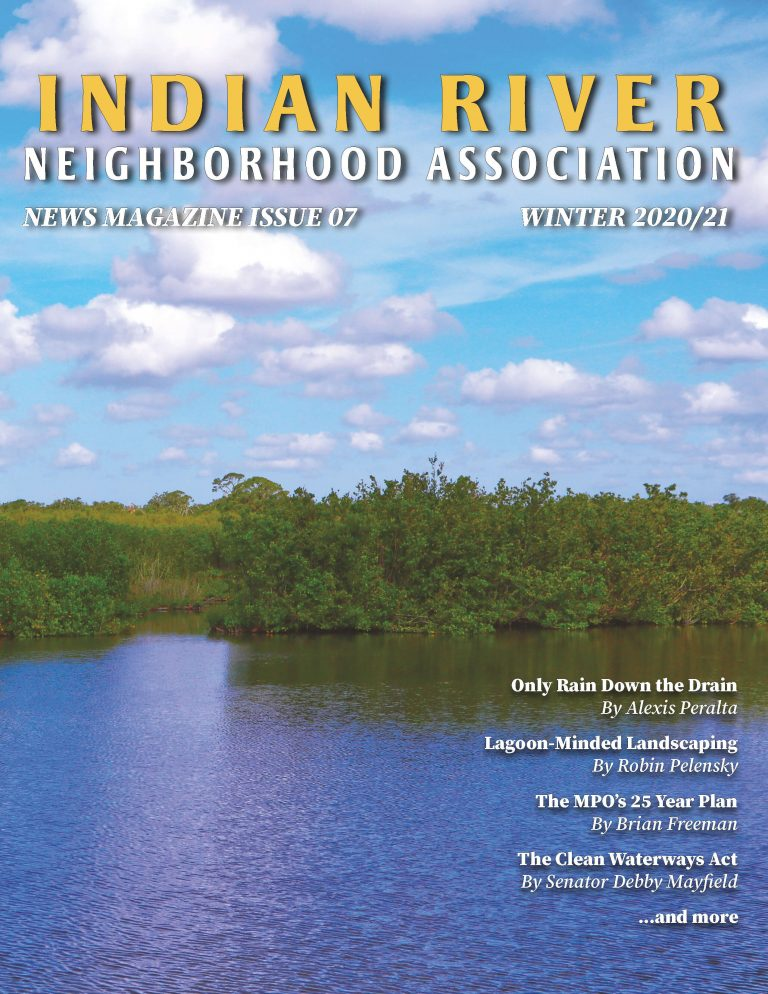 Check out our latest News Magazine Issue!